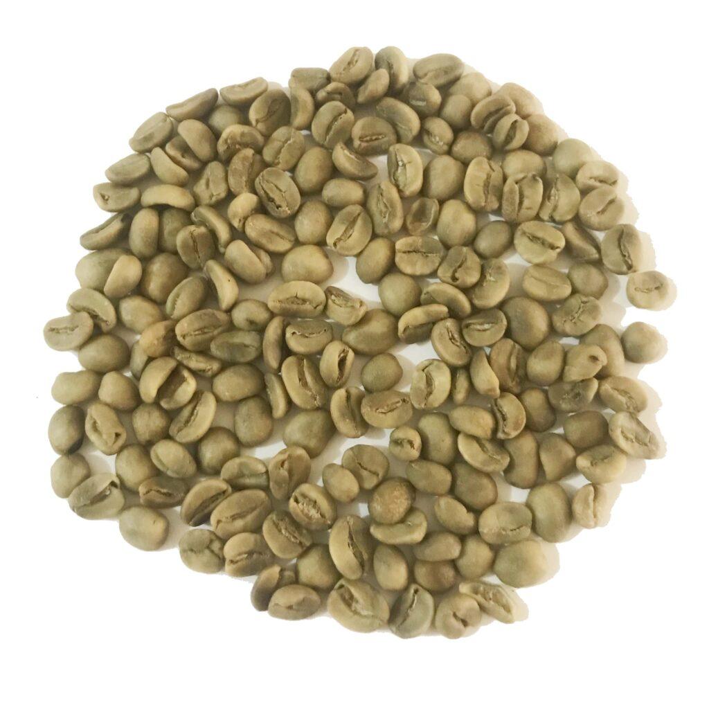 Green Coffee Beans - Villa Sarchi