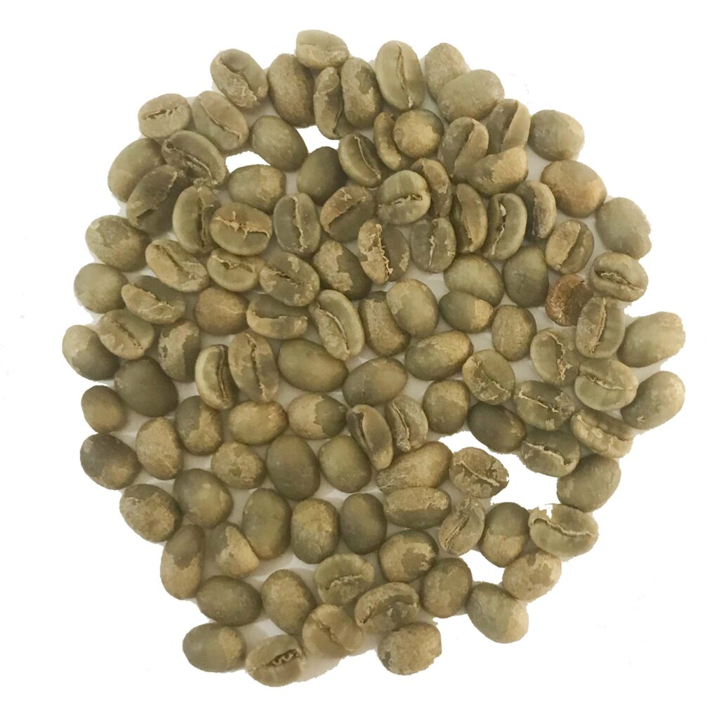 Green Coffee Beans - Pure Borbon